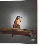 I'm A Bluebird And I'm Beautiful Wood Print