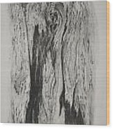Image Of Face In Wood Bark Wood Print by Glenn Calloway