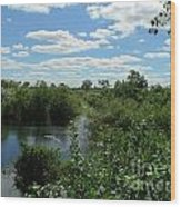 Images Of The Pantanal Wood Print