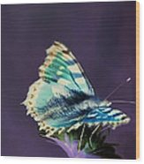 Imaginary Butterfly Wood Print