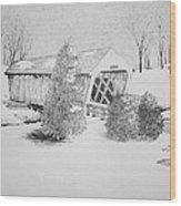 Imes Snow Bridge Wood Print
