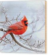 Img 2259-22 - Northern Cardinal Wood Print