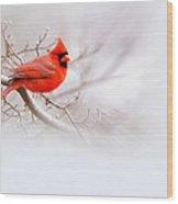 Img 2559-12 Wood Print