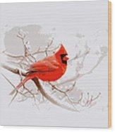 Img 2559-17 Wood Print