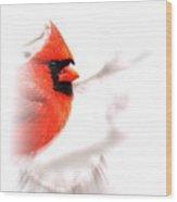 Img 2559-19 Wood Print