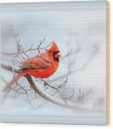 Img 2559-35 Wood Print