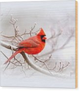 Img_2559-8 - Northern Cardinal Wood Print