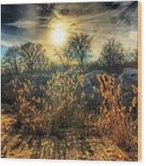 Crispy Wheat Wood Print