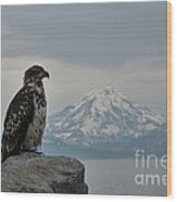 Immature Eagle And Alaskan Mountain Wood Print