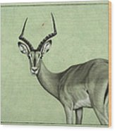 Impala Wood Print by James W Johnson