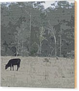 Impressionist Cows Grazing Wood Print