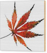 Impressionist Japanese Maple Leaf Wood Print