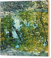 Impressionist Reflections Wood Print