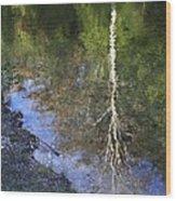 Impressionist Reflections Wood Print