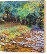 Impressionist Rocky Creek Wood Print