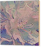 Impressionistic Spring Blossoms Wood Print