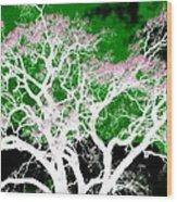 Impressions 1 Wood Print