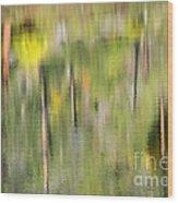 Impressions Of Autumn Wood Print