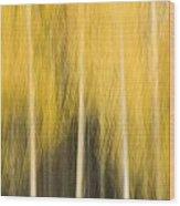 Impressions Of Golden Aspen Wood Print