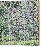 Impressions Of Spring 4 Wood Print