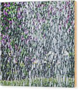 Impressions Of Spring 5 Wood Print