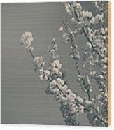 In A Beautiful World Wood Print
