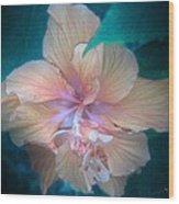 In A Butterfly Garden Wood Print