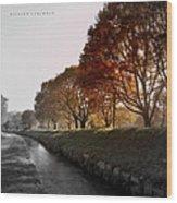 In A Dreamy Autumn Haze Wood Print