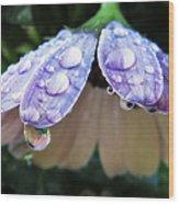 In A Drop Of Rain Wood Print