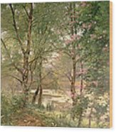 In A Fairy Woodland Wood Print