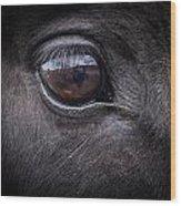 In A Horse's Eye Wood Print