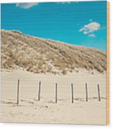 In A Line. Coastal Dunes In Holland Wood Print
