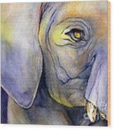 In Captivity Wood Print