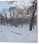 In Central Park Wood Print