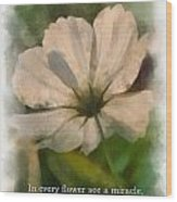 In Every Flower See A Miracle 01 Wood Print
