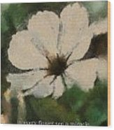 In Every Flower See A Miracle 03 Wood Print