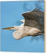 In Flight With Stick Wood Print