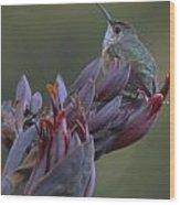 In Good Flowers Wood Print