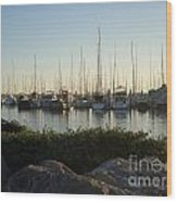 In Harbor Wood Print by Amy Strong