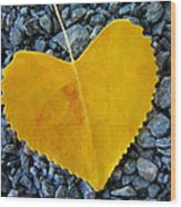 In Love ... Wood Print by Juergen Weiss