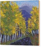 In Love With Fall River Road Wood Print