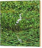 In Plain Sight Wood Print
