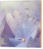 In Pursuit Of Purple 2 Wood Print