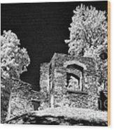 In Ruins Wood Print