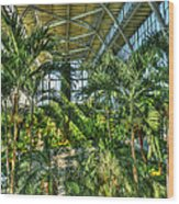 In The Conservatory Wood Print