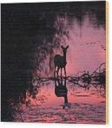 In The Creek Wood Print