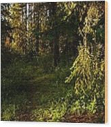 In The Druid Cathedral Wood Print