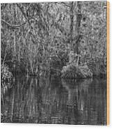 In The Everglades Wood Print