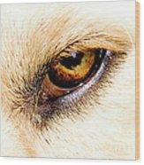 In The Eyes.... Wood Print