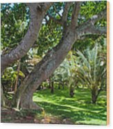 In The Garden. Mauritius Wood Print
